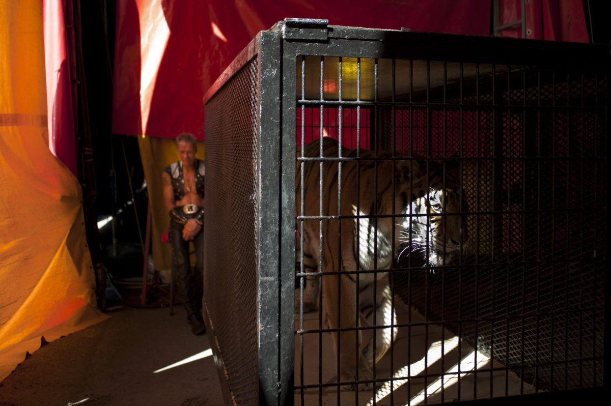 Cole Bros. Circus 2011